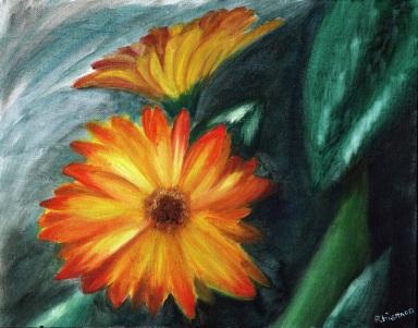 daisies small